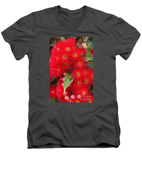 Australian Red Eucalyptus Flowers Men's V-Neck T-Shirt by Joy Watson