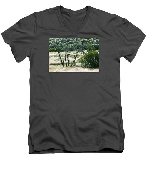 Autumn And Grass In Isle Of Skye, Uk Men's V-Neck T-Shirt by Dubi Roman