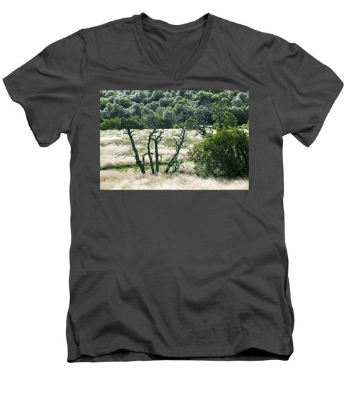 Autumn And Grass In Isle Of Skye, Uk Men's V-Neck T-Shirt