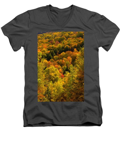 Autumn At Acadia Men's V-Neck T-Shirt