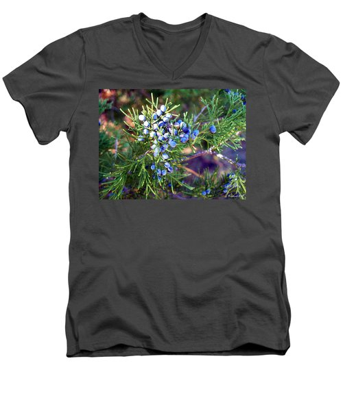 Men's V-Neck T-Shirt featuring the photograph Autumn Berries by Betty Northcutt