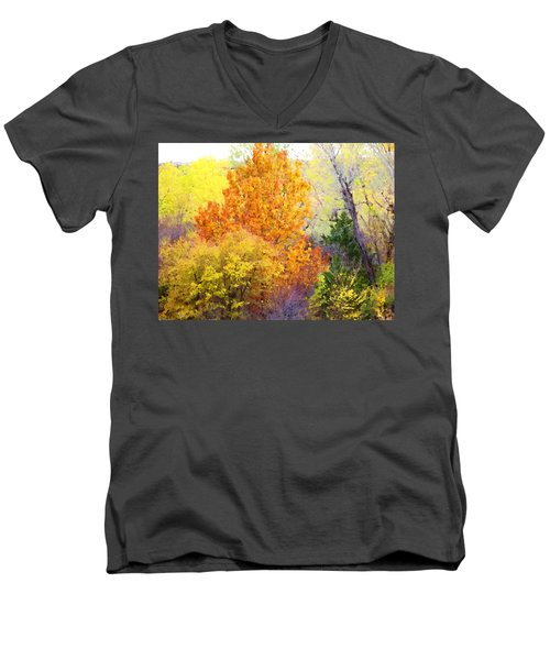 Autumn Blaze  Men's V-Neck T-Shirt