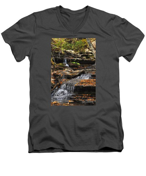 Autumn Brook Men's V-Neck T-Shirt by Diane E Berry