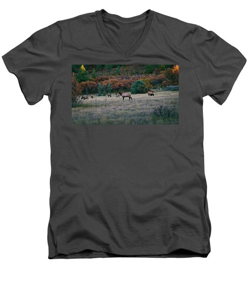 Autumn Bull Elk Men's V-Neck T-Shirt by Jason Coward