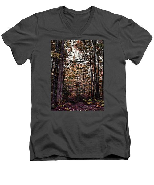 Autumn Color In The Woods Men's V-Neck T-Shirt by Joy Nichols
