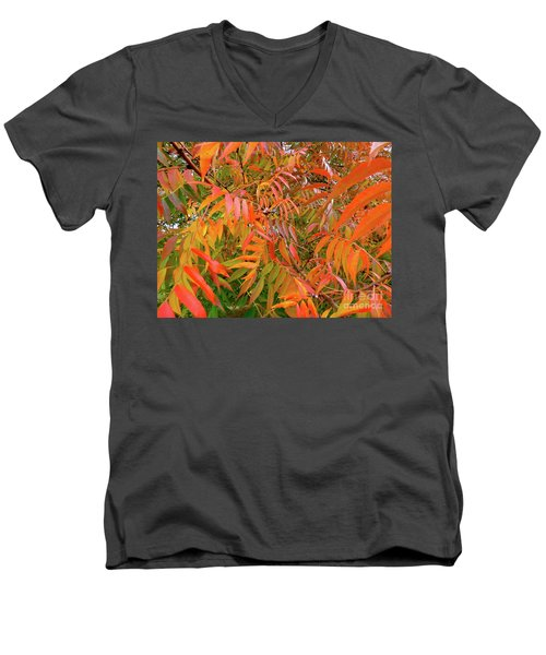 Autumn Color Men's V-Neck T-Shirt