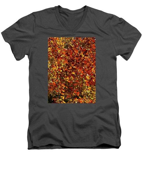 Men's V-Neck T-Shirt featuring the photograph Autumn Colors by Karen Harrison