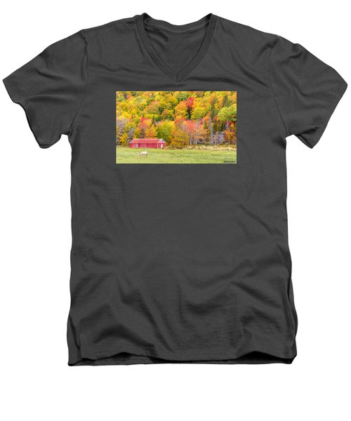 Autumn Colors Near Lake Ainslie  Men's V-Neck T-Shirt