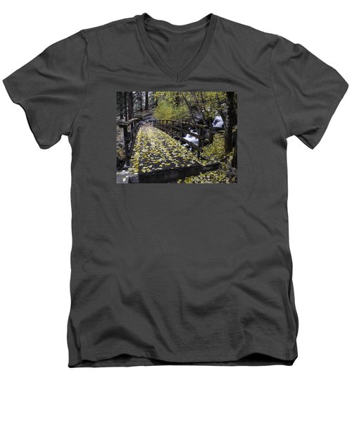 Autumn Crossing Men's V-Neck T-Shirt