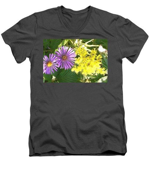 Autumn Duo Men's V-Neck T-Shirt