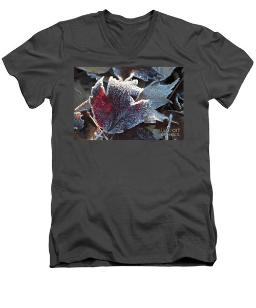 Men's V-Neck T-Shirt featuring the photograph Autumn Ends, Winter Begins 2 by Linda Lees