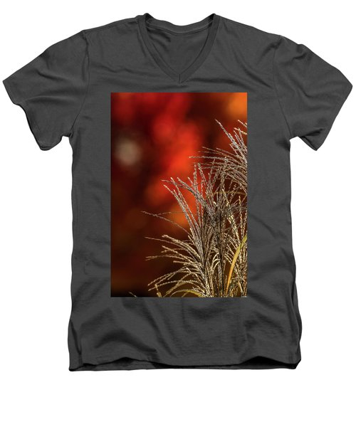 Autumn Fire - 2 Men's V-Neck T-Shirt