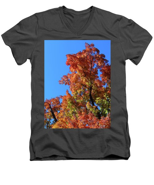 Autumn Foliage Men's V-Neck T-Shirt