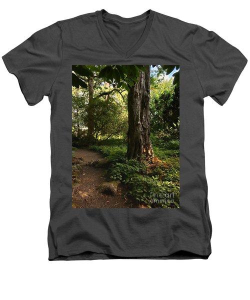 Autumn Forest  Men's V-Neck T-Shirt