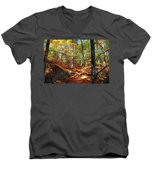 Autumn Forest Killarney Men's V-Neck T-Shirt by Debbie Oppermann