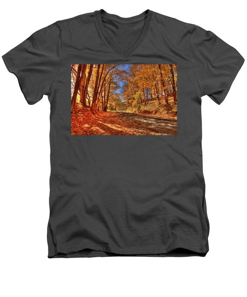 Autumn Glow Men's V-Neck T-Shirt by Dale R Carlson