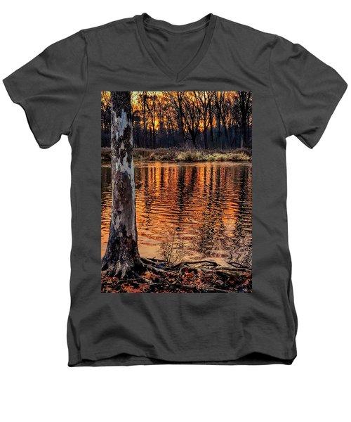 Autumn Gold Men's V-Neck T-Shirt