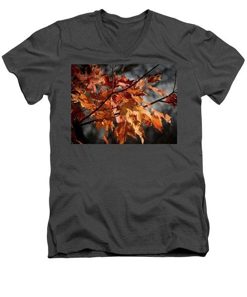 Autumn Gray Men's V-Neck T-Shirt by Kimberly Mackowski