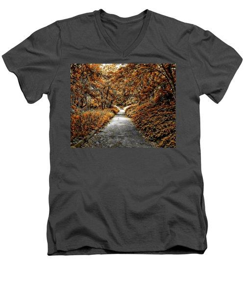Autumn In Stamford Men's V-Neck T-Shirt