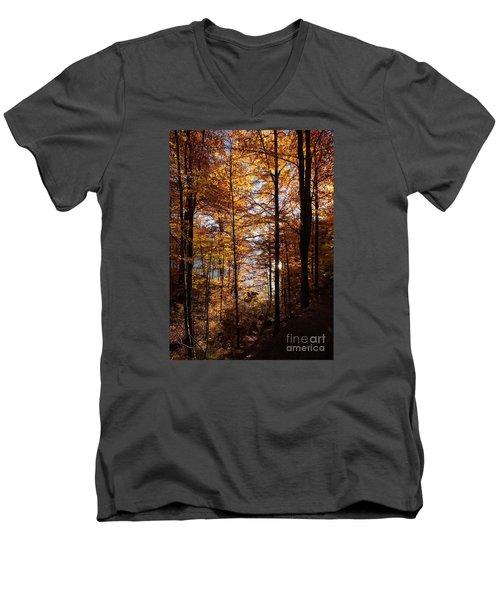 Autumn In The Alps 4 Men's V-Neck T-Shirt by Rudi Prott