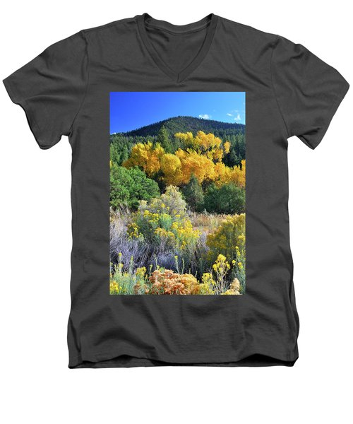 Autumn In The Canyon Men's V-Neck T-Shirt