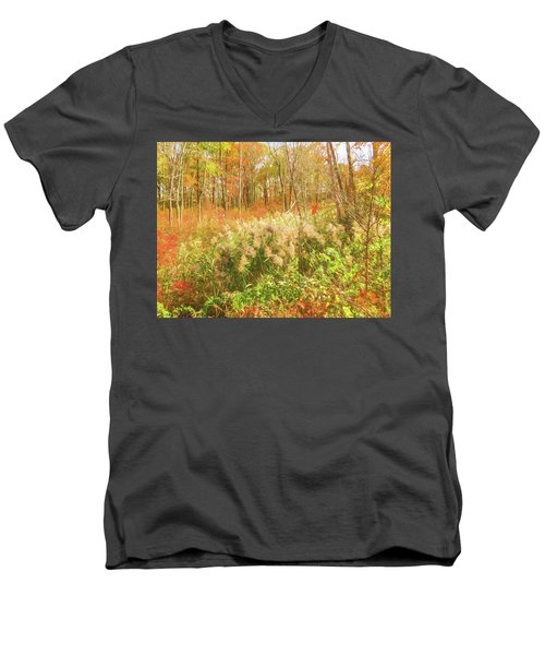 Autumn Landscape Men's V-Neck T-Shirt