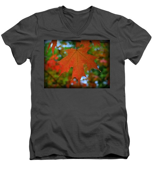 Autumn Leaf In The Rain Men's V-Neck T-Shirt