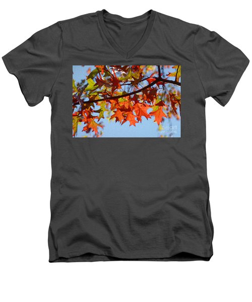 Autumn Leaves 16 Men's V-Neck T-Shirt