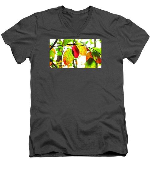 Men's V-Neck T-Shirt featuring the photograph Autumn Leaves At Lake Padden by Karen Molenaar Terrell
