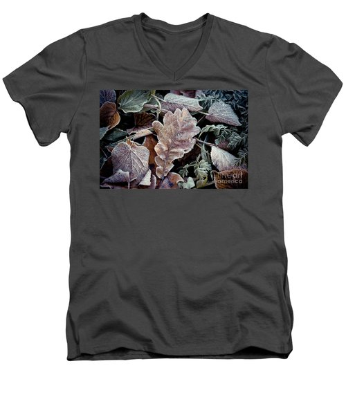 Autumn Leaves Frozen Artmif.lv Men's V-Neck T-Shirt