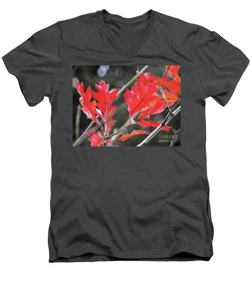 Men's V-Neck T-Shirt featuring the photograph Autumn Leaves by Peggy Hughes