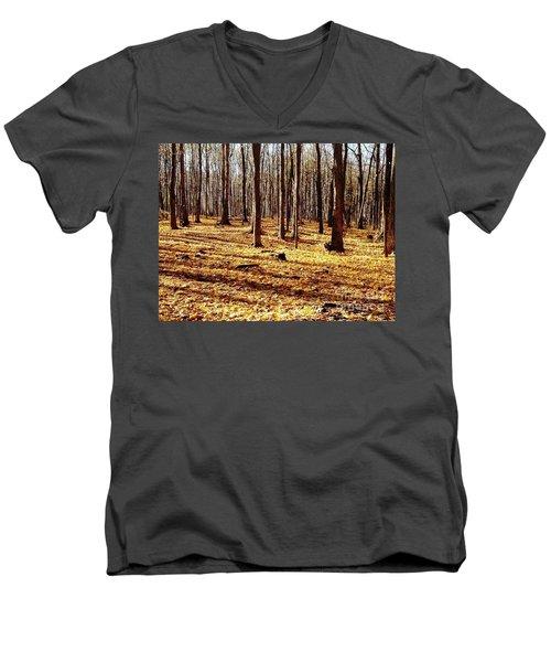 Autumn Leaves Men's V-Neck T-Shirt by Vicky Tarcau