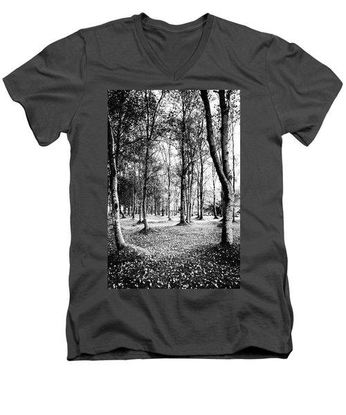 Autumn Lights Men's V-Neck T-Shirt by Edgar Laureano