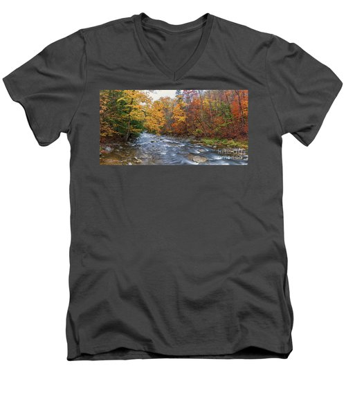 Autumn Magic Men's V-Neck T-Shirt