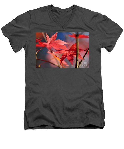Autumn Maple Men's V-Neck T-Shirt