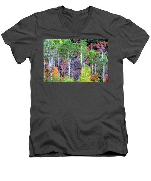 Autumn Mix Men's V-Neck T-Shirt