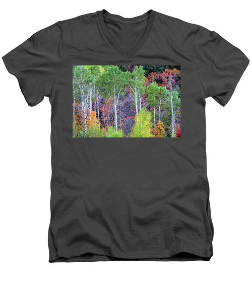 Autumn Mix Men's V-Neck T-Shirt
