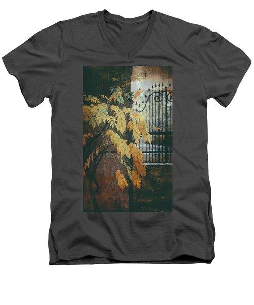 Autumn Mood Men's V-Neck T-Shirt