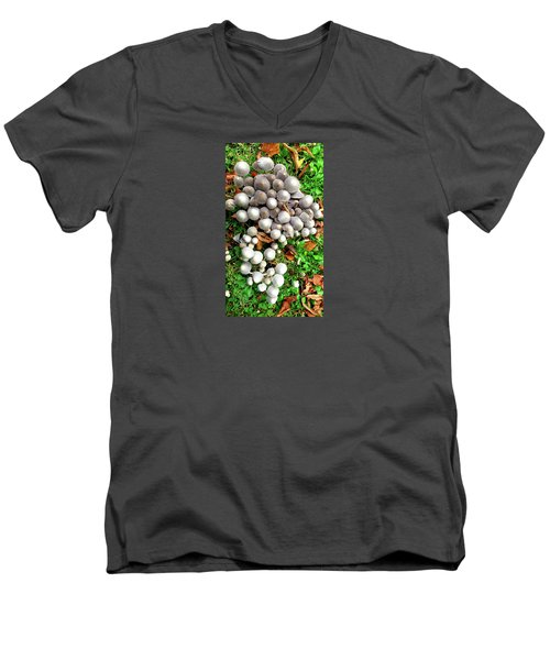 Autumn Mushrooms Men's V-Neck T-Shirt