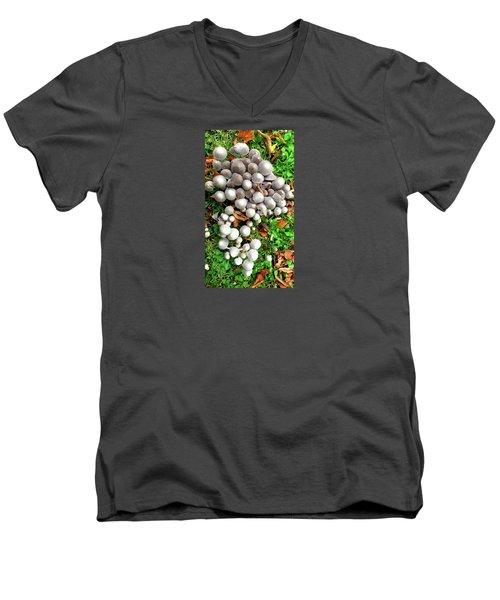 Autumn Mushrooms Men's V-Neck T-Shirt