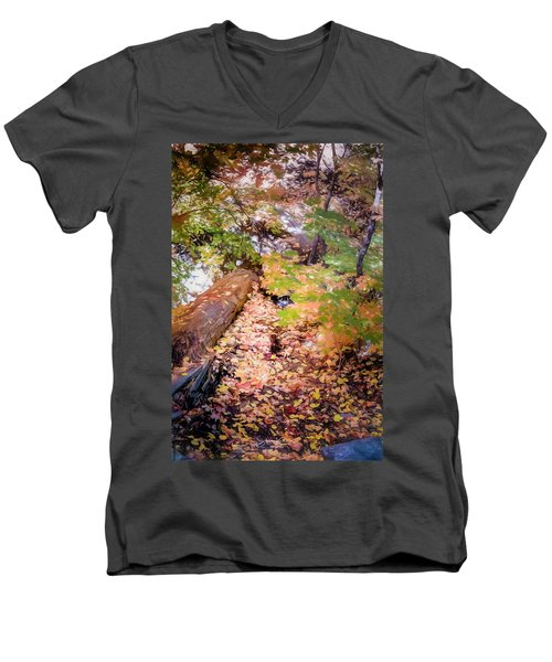 Autumn On The Mountain Men's V-Neck T-Shirt