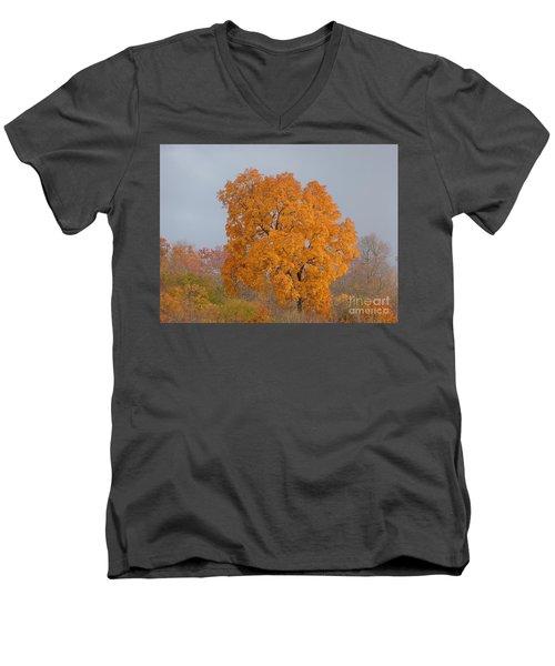 Autumn Over Prettyboy Men's V-Neck T-Shirt