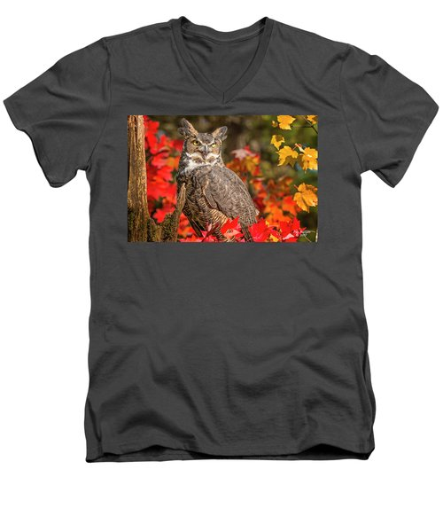 Autumn Owl Men's V-Neck T-Shirt