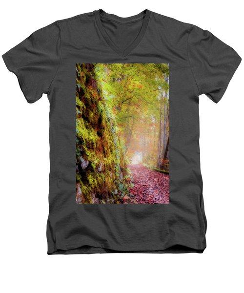 Autumn Path Men's V-Neck T-Shirt