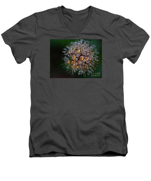 Autumn Pearls Men's V-Neck T-Shirt by AmaS Art