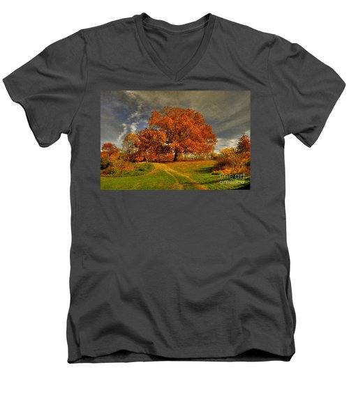 Autumn Picnic On The Hill Men's V-Neck T-Shirt by Lois Bryan