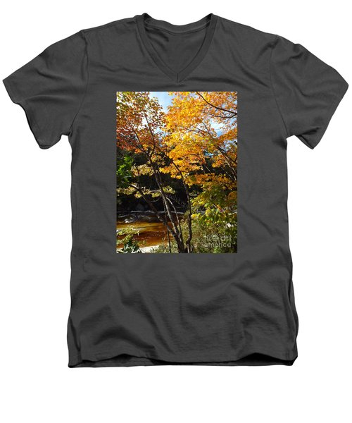 Autumn River Men's V-Neck T-Shirt