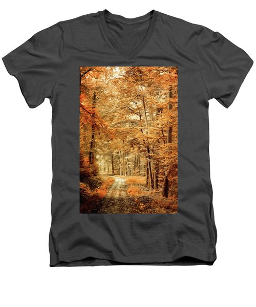 Autumn Secret Men's V-Neck T-Shirt