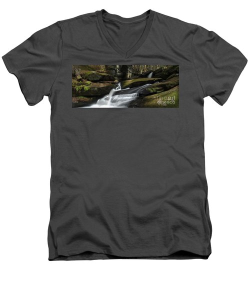 Autumn Secrets Men's V-Neck T-Shirt