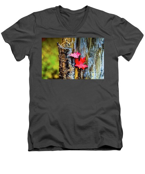 Autumn Silence Men's V-Neck T-Shirt